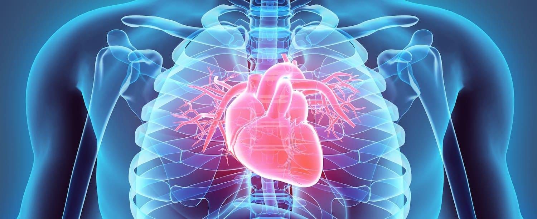 Immunotherapy cardiotoxicity higher than previously estimated