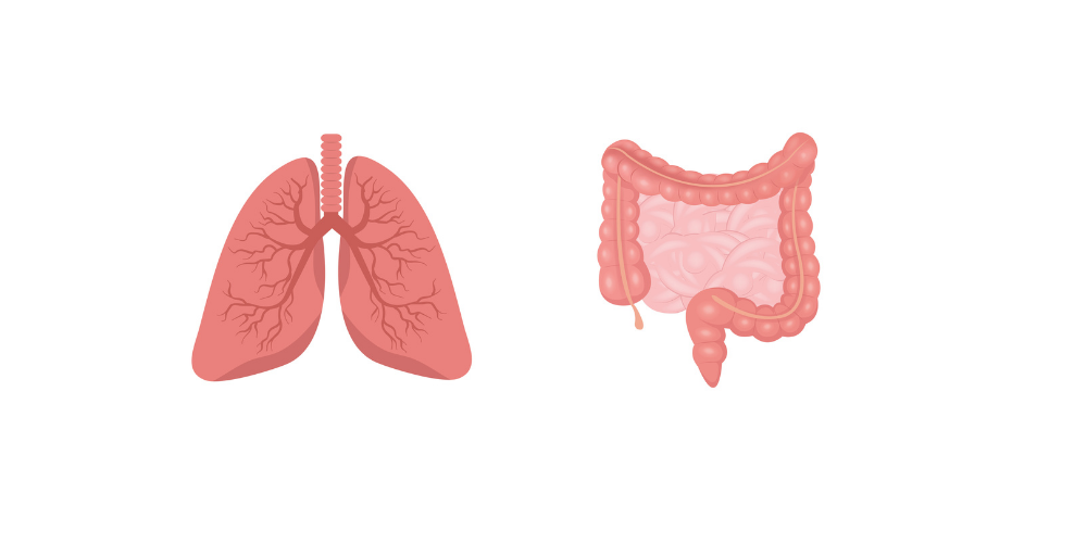 What's new in lung and colorectal cancer? reports from ESMO 2021